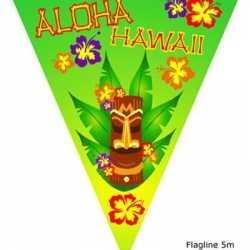 Vlaggenlijn hawaii 5 meter