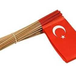 Vlaggetje Turkije 50 st.