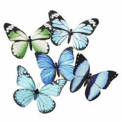 Vlinder magneet blauw/groen 13.5