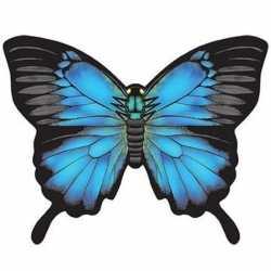 Vlinder vlieger blauw 70 bij 48