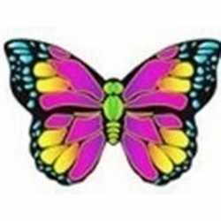 Vlinder vlieger roze 55 bij 65