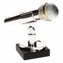 Zilveren karaoke prijs 15