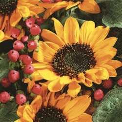 Zonnebloemen servetten 33