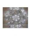 Sneeuwvlok verlichting 30 lampjes