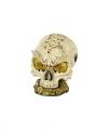 Spaarpot schedel 14