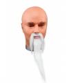 Tovenaars baard snor wit