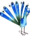 Tuinbeeld blauwe pauw 60
