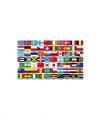 Vlag 70 landen 150 bij 90