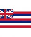 Vlag hawaii 90 bij 150