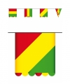 Vlaggenlijn carnaval karton 3 meter