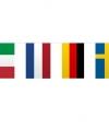 Vlaggenlijn europa 10 meter