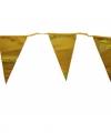 Vlaggenlijn goud 3 meter