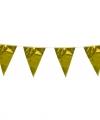 Vlaggenlijn metallic goud 10 meter