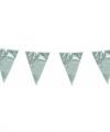 Vlaggenlijn metallic zilver 10 meter