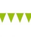 Vlaggenlijn xl lime groen 10 meter