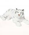 Wnf pluche witte tijger knuffel 81